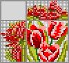 Японский кроссворд Три тюльпана